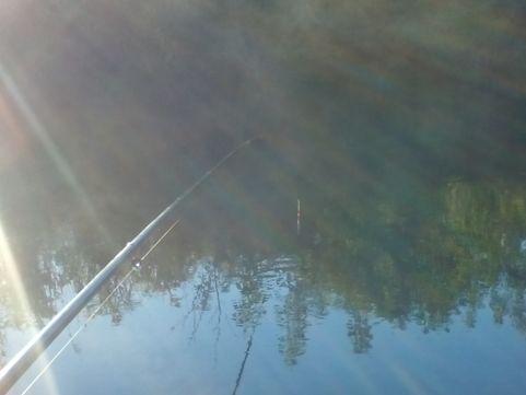 рыбалка на карася с висячим поплавком